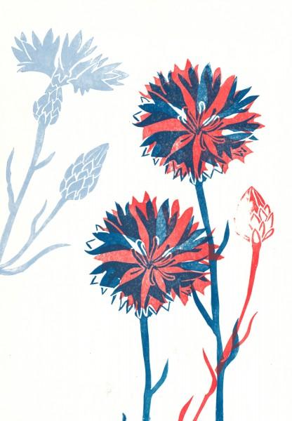 Wildblumen 3 - Nina Heinke & Verena Postweiler