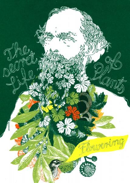 The secret Life of Plants - Flowering