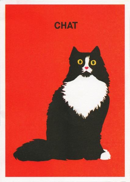 Chat – La Météo